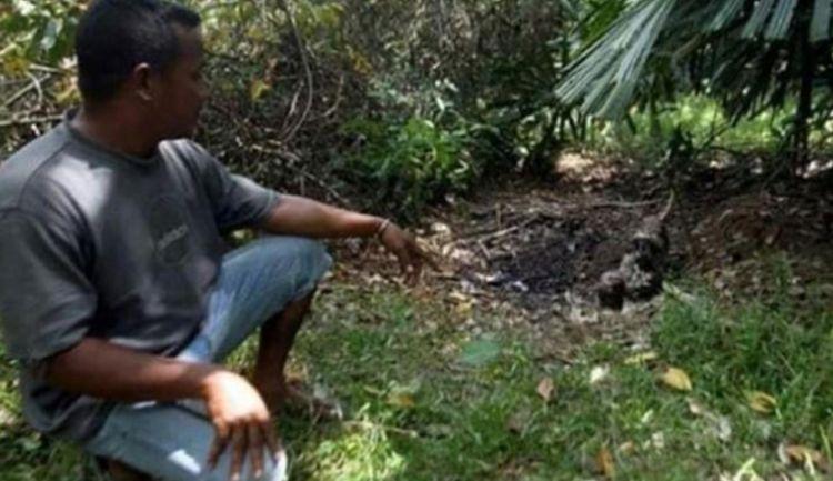 马来西亚发生一起骇人命案:女童遭掳杀 其体内器官被切除