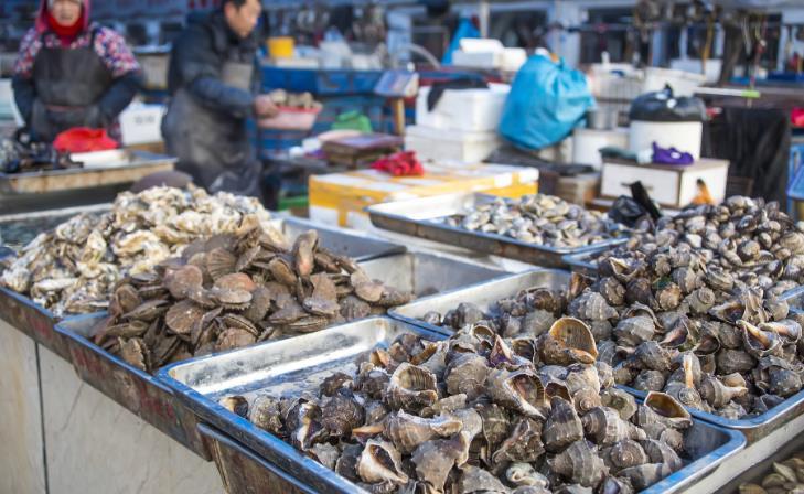 山东滨州:鲁北蔬菜批发市场节后货源充足迎开市