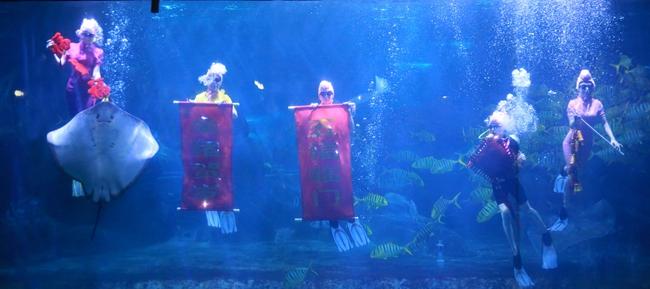 海洋世界美人鱼表演佩奇闹新春