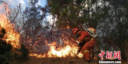 云南大理海东森林火灾明火已扑灭 过火面积约950亩