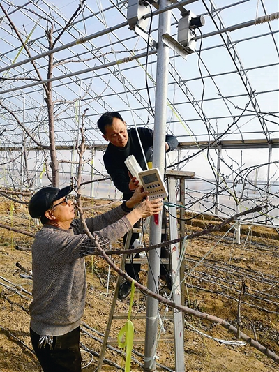 弃商从农 父子俩投资2000多万在荒山上建田园综合体
