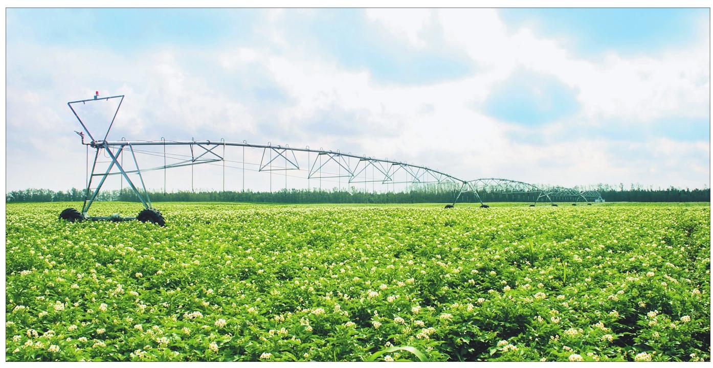 农业农村部: 力争全年农业生产开门红