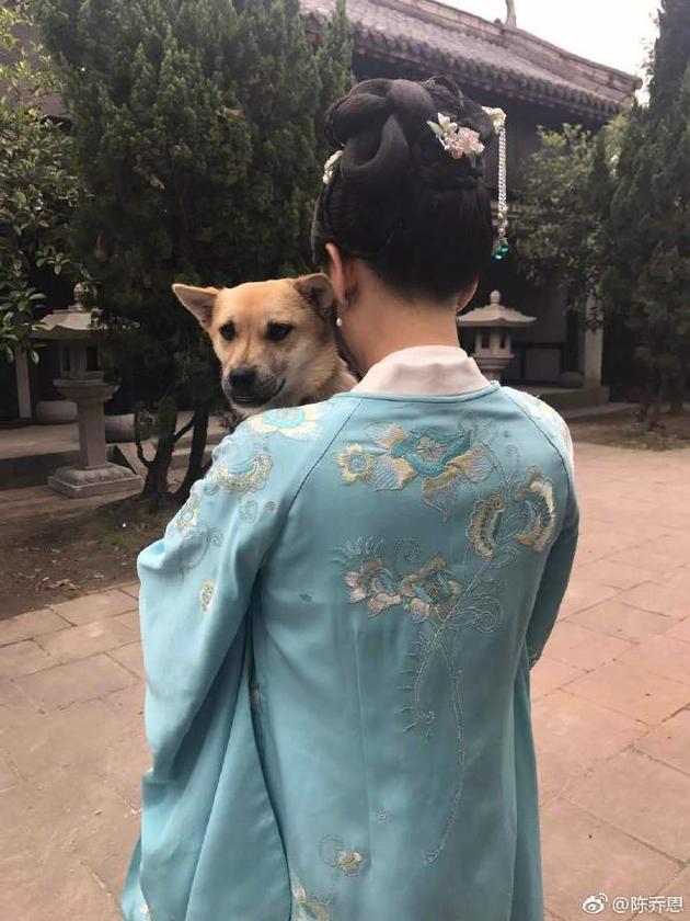 陈乔恩为爱狗庆生