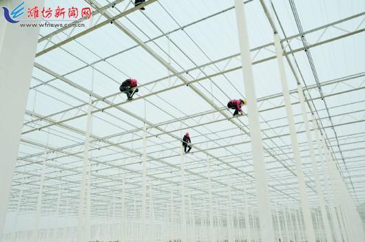 潍坊市寒亭区统筹布局建设现代化产业体系
