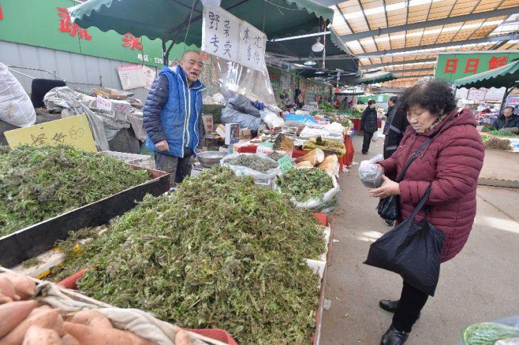 荠菜、苦菜、面条菜 青岛最适合挖野菜的地方是这!