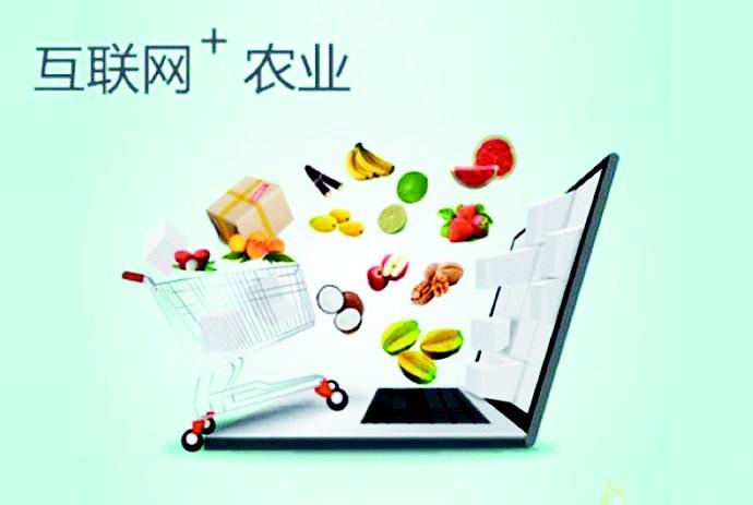 """菏泽打造""""中国农产品电商之都""""积极推进农产品网货化、特色化、规模化、标准化、品牌化建设"""