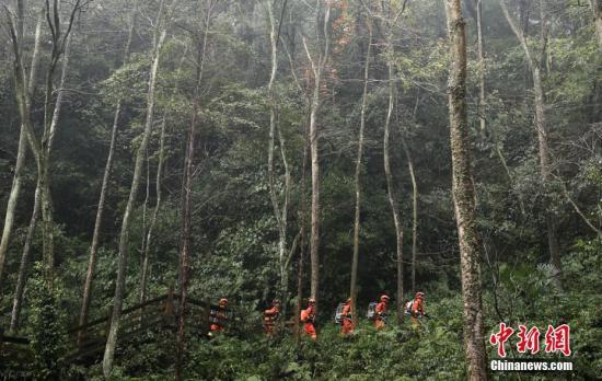 两部门发高森林火险预警:京冀晋等地达高度危险级别