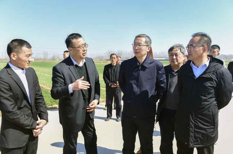济南首个大蒜蔬菜交易市场及产业园项目落户白桥镇