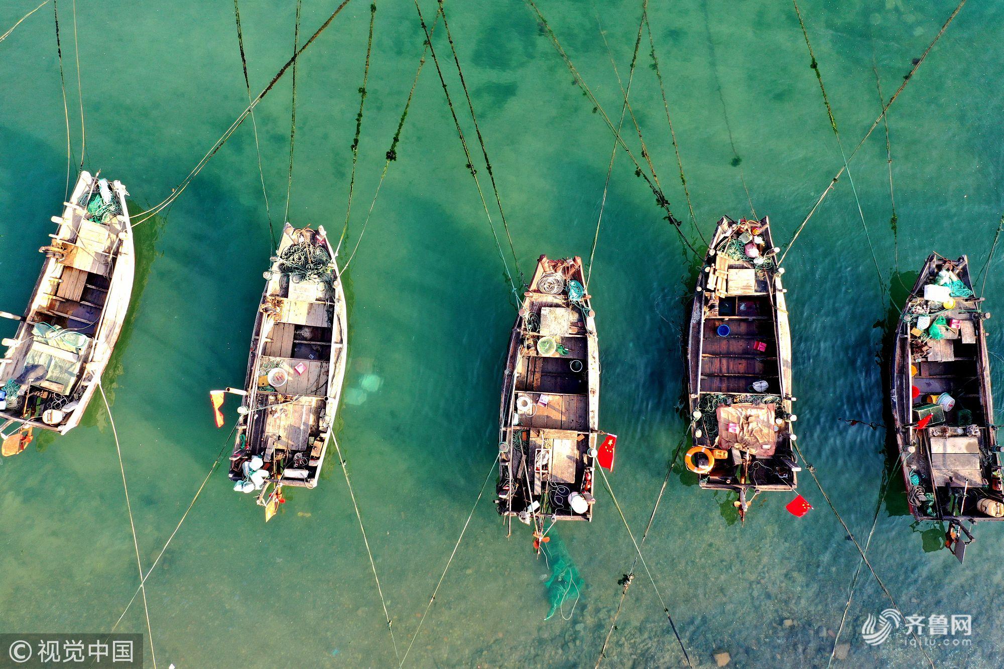 山东青岛:航拍春日渔港 渔船飘摇美如风景画