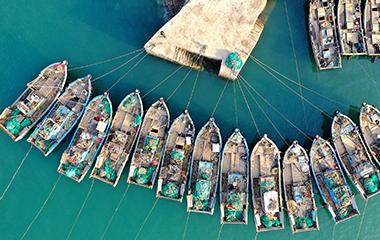 航拍青岛春日渔港 渔船飘摇美如风景画