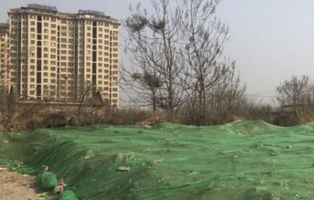 """淄博高新区朱庄村""""垃圾围村""""现象仍未彻底解决 整改流于表面"""