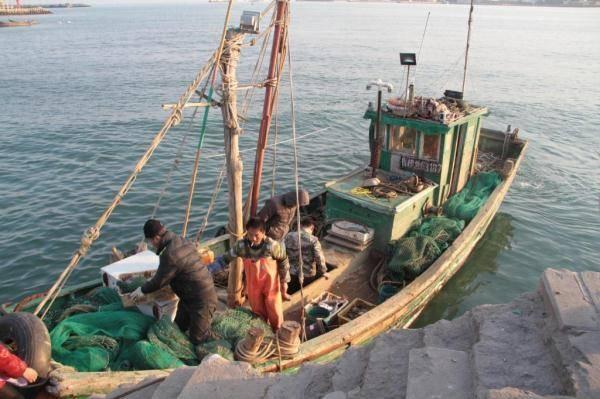 组图:青岛渔民一天捞80斤海鲜 上岸5分钟就被抢光