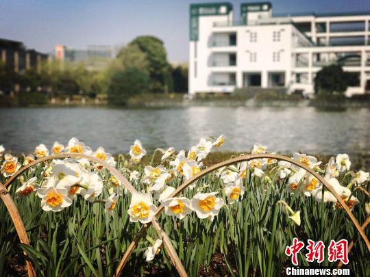 """未来三日杭州气温""""急升猛降""""一周内体验""""四季轮回"""""""
