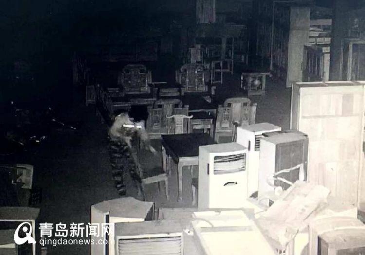 青岛50岁大叔乔装披肩发女子 盗走40万元名贵红木家具