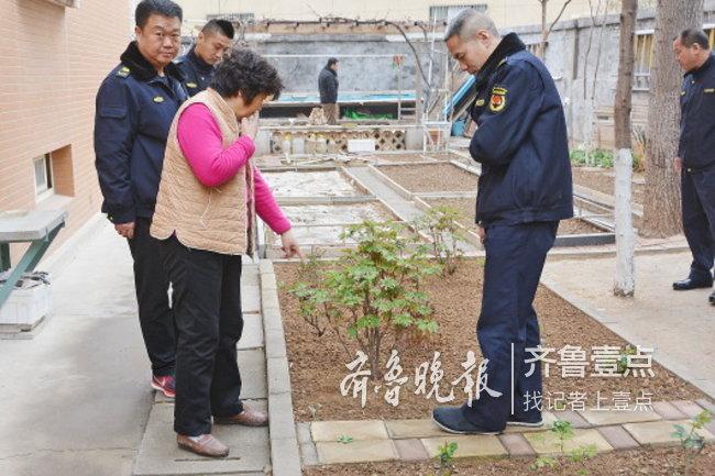 """美化环境?济南小区千余平绿地成""""私家菜园""""!被拔除"""