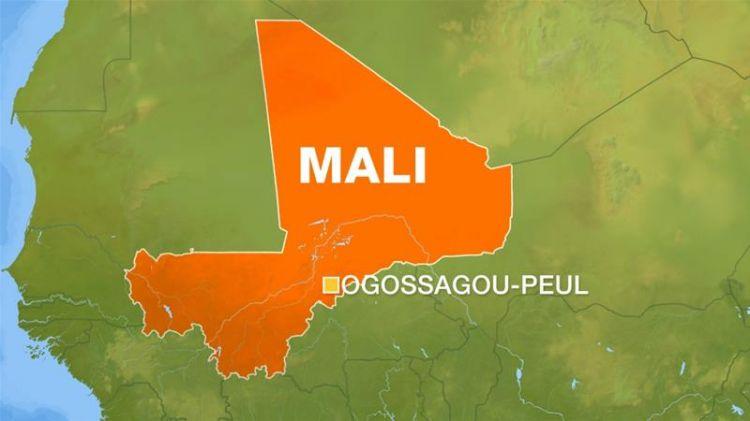 马里中部一村庄遭袭击 110人死亡