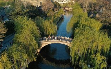 航拍:绿柳依依 济南护城河风景如画