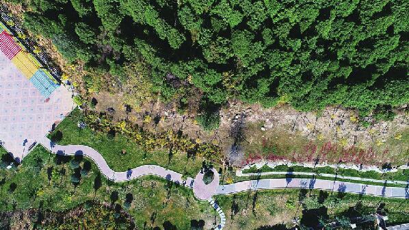 八成山体已绿化,济南处处好风光