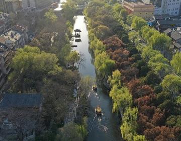 绿柳依依 济南护城河风景如画