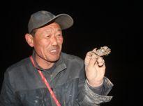膏肥肉鲜的河蟹出窝啦!滨州村民夜里抓蟹解馋