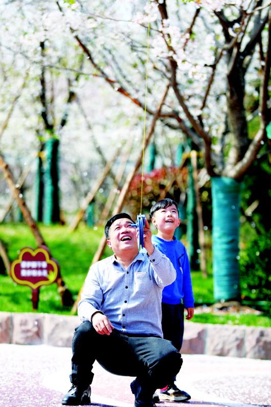 """今春全市义务植树950余万株 济南发放""""绿色红利"""""""