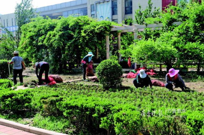 济南长清区园林和林业绿化局抢抓时机,加快造林绿化