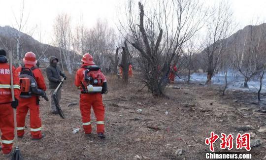 内蒙古一男子违规驾车进林区引发山火被刑拘