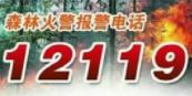 @所有淄博人 发现森林火情 及时拨打12119