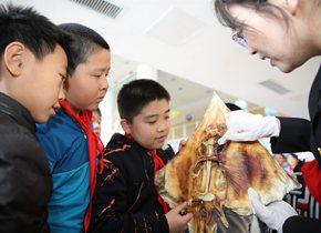 海关进校园宣传国门生物安全 让孩子们生动理解生态文明