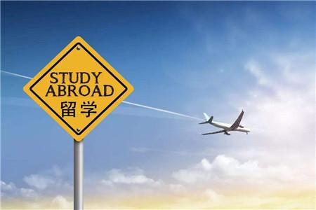 留学回国人数增长8% 更多海外学子愿意回来干