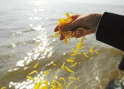 淄博市第十七届海葬活动本月举行