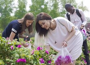 多国留学生赴平阴自制玫瑰香皂体验中国乡村