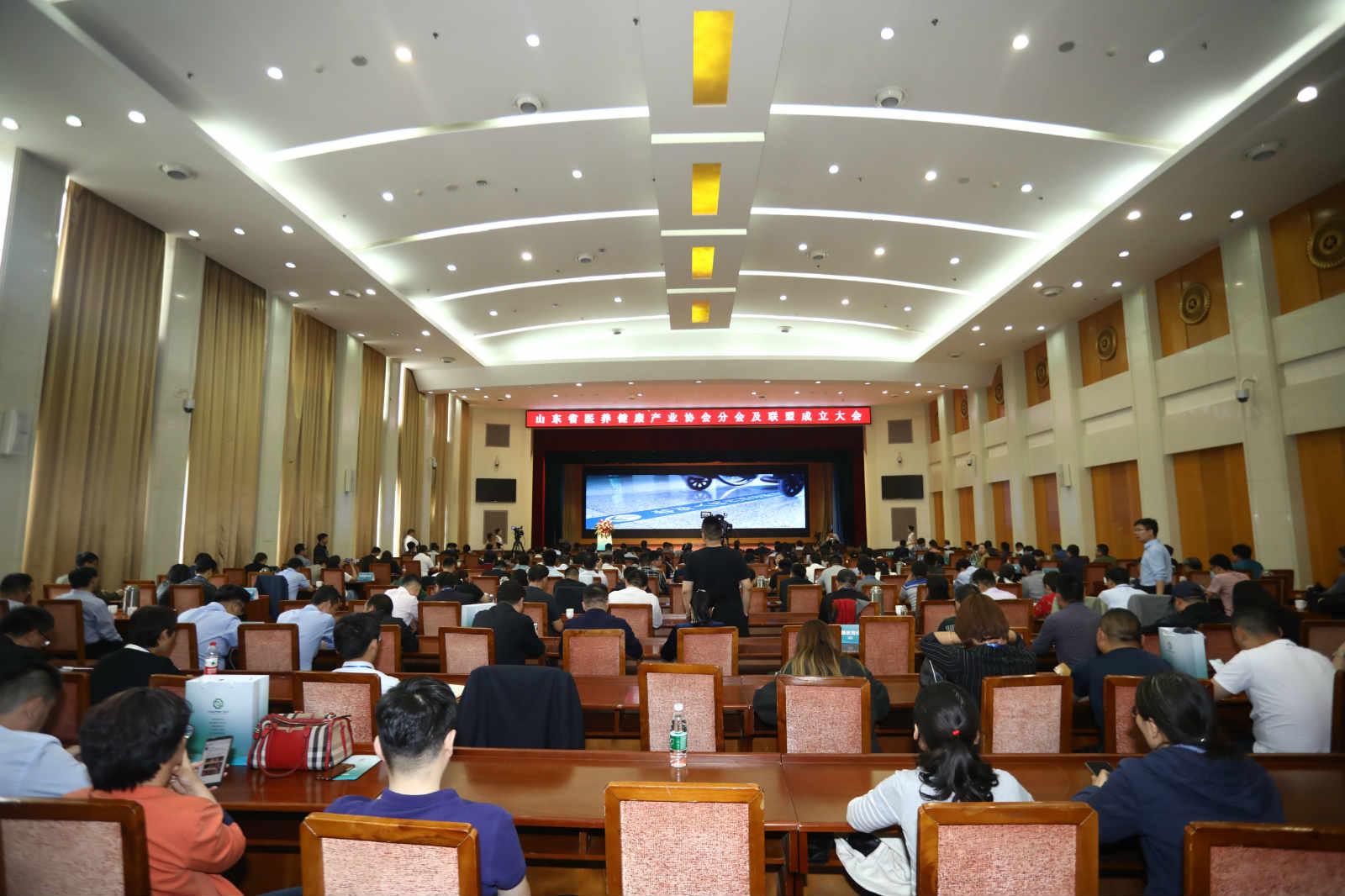 """山东省医养健康产业协会""""三分会两联盟""""成立大会在济南召开"""