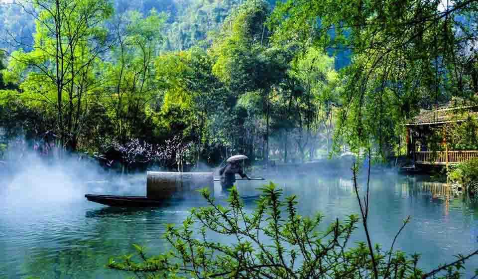 我国生态环境持续向好 森林覆盖率升至22.96%