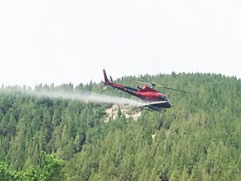 淄博今年首次启动飞防 计划作业面积56.15万亩次