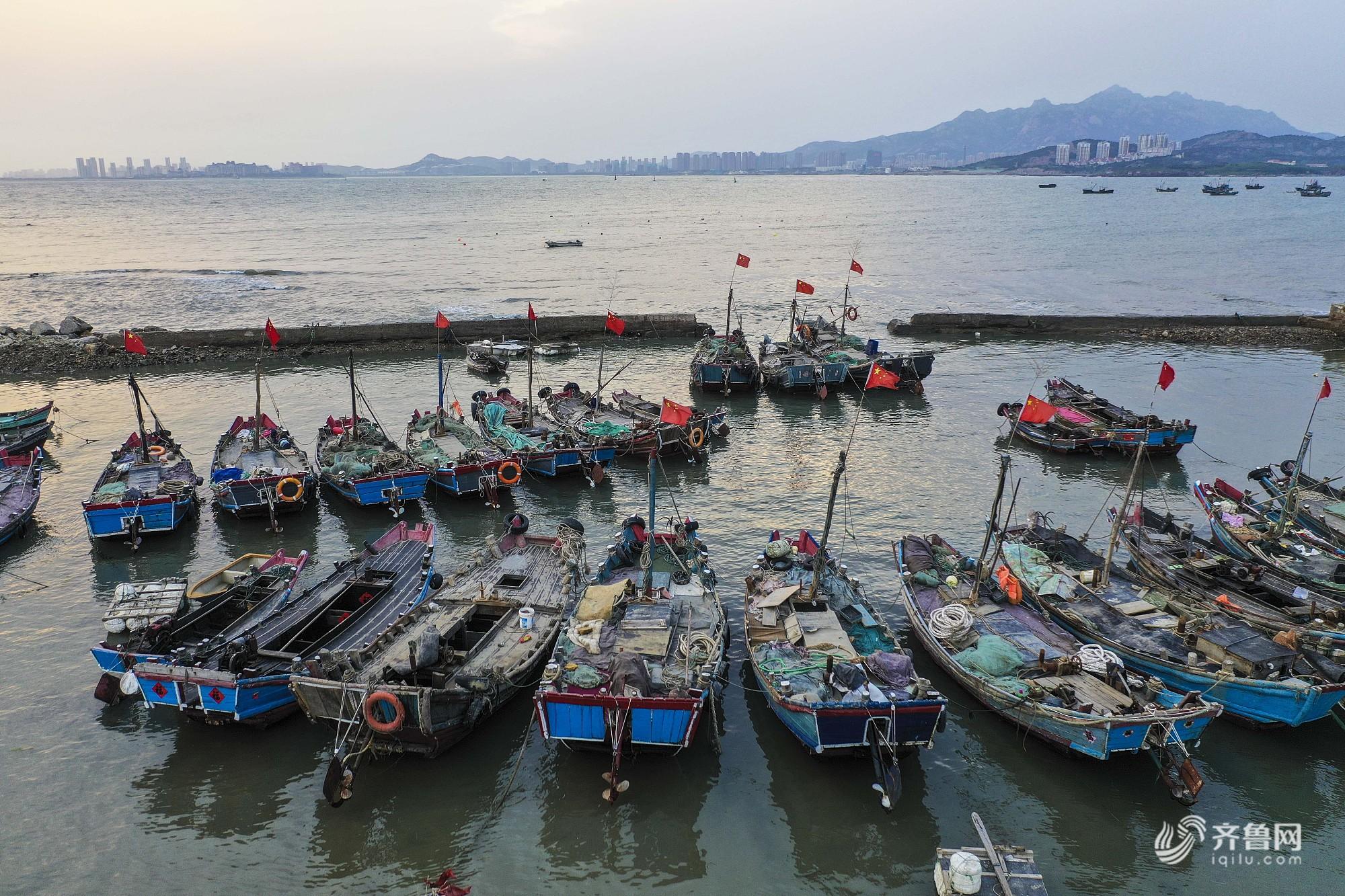 航拍山东青岛西海岸新区鱼鸣嘴渔港 伏季休渔期渔港井然有序