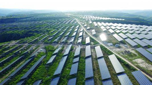 聊城打造县域特色农业产业集群