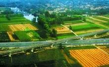 看聊城首家邮农场如何搭起农户和现代农业的桥梁