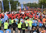 2019卡尔美·仙境海岸海阳马拉松圆满结束 你的跑马照片都能在官网下载!