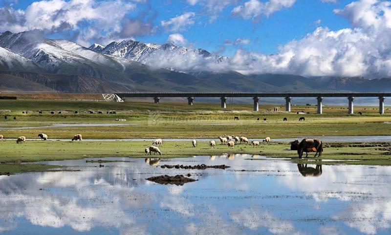 青藏铁路走过35年