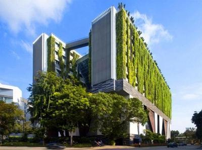 淄博:新建绿色建筑设计阶段标准执行率不低于98%