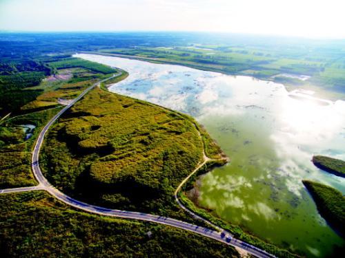 聊城:位山灌区引来2亿立方米黄河水抗旱保苗