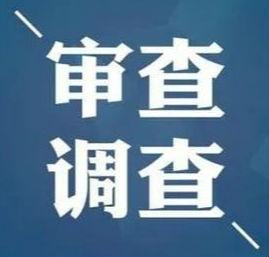 淄博市生态环境局淄川分局环境监察大队办公室副主任程汉平接受审查调查
