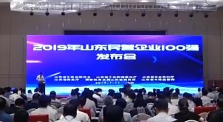 鲁南制药上榜山东省民营企业100强