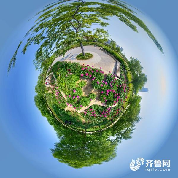 菏泽牡丹园.jpg