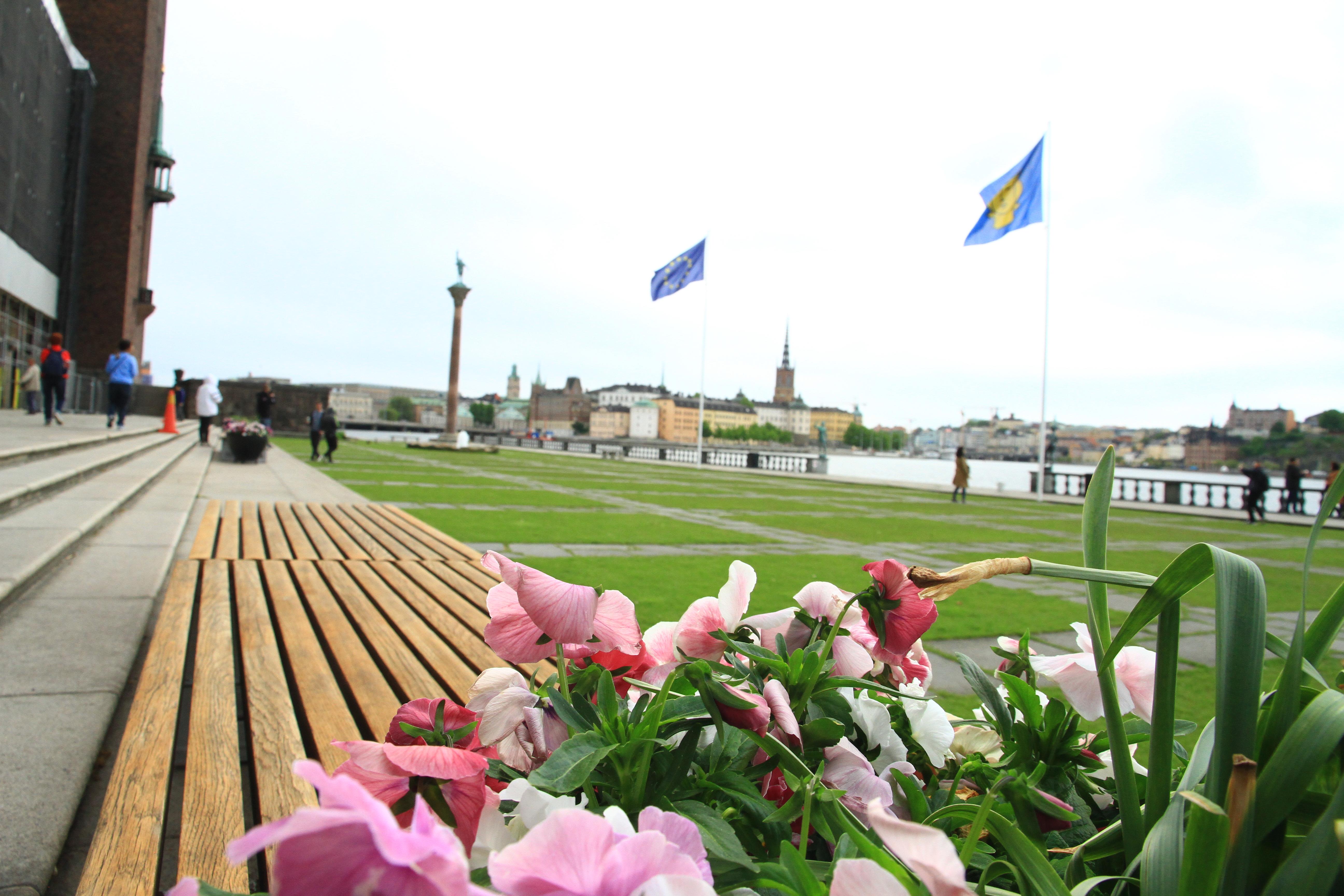 133、瑞典斯德哥尔摩:市政厅广场草坪和梅拉伦湖