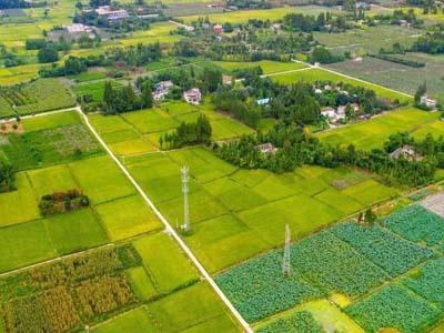 聊城深化农村集体产权制度改革 6226个村完成确权登记颁证