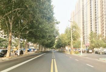 张店共青团路全线贯通 除东二路涝淄河桥段外均已完工