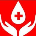 淄博110人七夕节爱心献血42200毫升