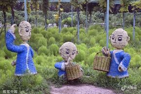 济宁卡通稻草人亮相百亩花海 演绎童话世界萌态十足